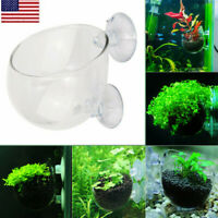 Aquarium Fish Tank Glass Crystal Red Live Plant Cup Pot Shrimp Holder Aquatic OC