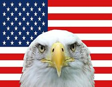 Large American Eagle US Flag Car Decal USA Patriotic Auto Bumper Sticker Window