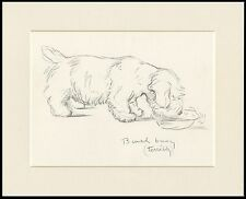 SEALYHAM TERRIER BUSY EATING READY MOUNTED LUCY DAWSON DOG ART SKETCH PRINT