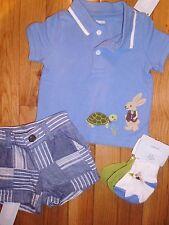 0 3 M Gymboree 4pc Blue Bunny Rabbit Shirt Shorts Outfit New Born Baby Boy NWT
