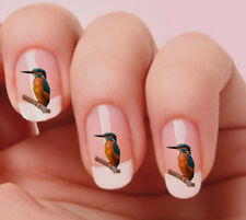 20 Nail Art Decals Transfers Stickers #261 - Bird Kingfisher