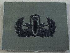 US Army Subdued Cloth Vintage Explosive Ordnance Badge - EOD
