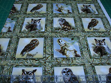 1 Yard Quilt Cotton Fabric - Spectrix Giordano Owls of Wonder Squares