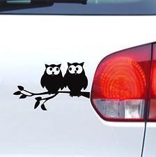 Auto Aufkleber Verliebte Eulen fun Vogel sticker