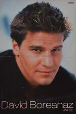 DAVID BOREANAZ - A3 Poster (42 x 28 cm) - Bones Clippings Fan Sammlung NEU