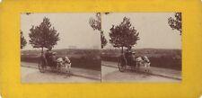 Promenade en calèche et le Cheval blanc Stereo Vintage citrate vers 1900
