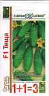 Seeds Cucumber «Mother in-law F1» Vegetable Organic  Russian GAVRISH