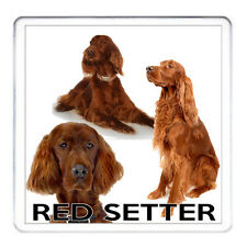 RED SETTER DOG COASTER,Can Be Personalised. Red Setter Gift Mug Also Available