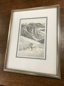 Ron Parker Original Pencil Drawing Dall Sheep 1984 Framed