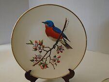 Avon Bluebird Blue Bird North American Songbird Plate Don Eckelberry Design