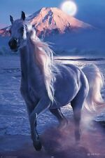 CHRISTIAN RIESE LASSEN POSTER (61x91cm) IMPERIAL MAJESTY HORSE PICTURE PRINT NEW
