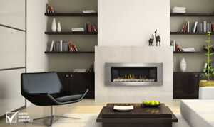 Napoleon  LHD45NSB Linear 45 Modern Direct Vent Clean Face Gas Fireplace