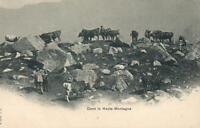 1900's VINTAGE Dans la Haute Montagne Cows in Swiss Alps POSTCARD - EXCELLENT