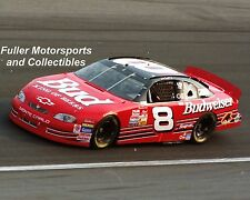 New listing DALE EARNHARDT JR ROOKIE #8 BUD 1999 NASCAR 8X10 PHOTO BUDWEISER WINSTON CUP