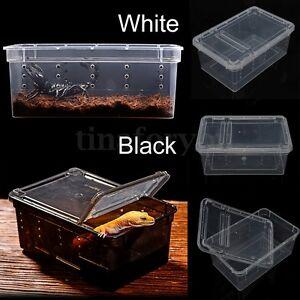 Transparent Plastic Plastic Box Insect Reptile Pet Transport Breeding Feeding