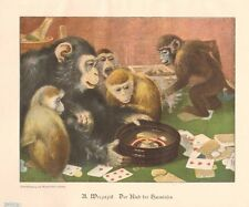 Monkeys Gambling, Raid On The Casino, Roulette, 1899 German Antique Art Print