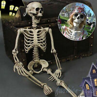 Halloween Full Size Human Skeleton Prop Funny Haunted House Scary Party Scenery