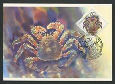 RUSSIA MK 1993 FAUNA KREBS KRABBE CRAB MAXIMUMKARTE CARTE MAXIMUM CARD MC d5975