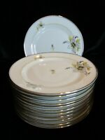 ANTIQUE P.T. BAVARIA TIRSCHENREUTH GERMANY US ZONE TIR561 RARE 12 SALAD PLATES