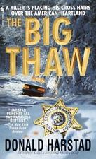The Big Thaw by Donald Harstad (2001, Paperback, Reprint)