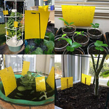 Trapro 30-Pack Dual-Sided Yellow Sticky Traps for Flying Plant Insect Fungus
