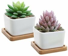 Set Of 2 Decorative Small White Square Ceramic Succulent Plant Pot W/ Bamboo -