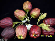 [9]Apples Red & Green on Wired Stem with Silk Leaves  3 Bunches  Lightweight