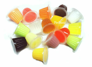 12 x Assorted Jelly Pots Treat Crested Gecko Insect Food Bearded Dragon