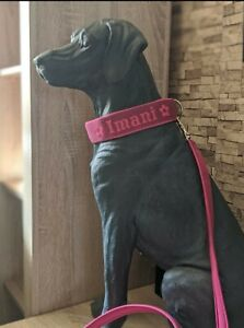 Hundehalsband 4,0  mit Softshell Polsterung  Bestickung mit Namen Telefonnummer