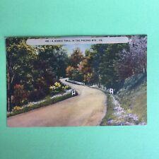 A scenic Trail In The Pocono Pennsylvania Mountains Posted Postcard