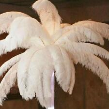 White 10PACK Ostrich Feathers Nature Feathers 16-18inch For Party Home Decor