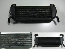 Ölkühler Kühler Oelkuehler Oil Cooler Radiator BMW R 1100 S, R11S R2S 259