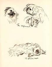 Original Vintage Lucy Dawson Chien Impression 1937 art ex-libris