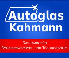 VW Polo Classic Frontscheibe / Windschutzscheibe mit Einbau