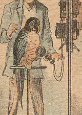SMART PARROT ON OLD WALL PHONE, CARTER'S SULPHUR WATERS CURE ALL TRADE CARD C381