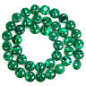 "Synthetic Malachite Gem Coin Loose Beads 15.5"" Strand 10mm 12mm 14mm 16mm Pick"
