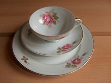 Rosenthal porcellana raccoglie assi posto a tavola Rose (N. 1)