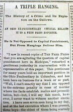 1889 Detroit MI newspaper 3 young boys 17 yrs old EXECUTED by HANGING for MURDER