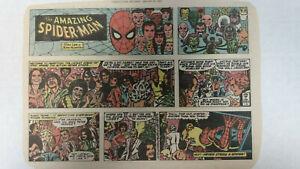 AMAZING SPIDER-MAN Newspaper Comic Strip                Sunday January 21st 1979