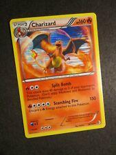 NM Pokemon (Holo) CHARIZARD Card BOUNDARIES CROSSED Set 20/149 Black White AP#1
