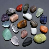 20x Natural Gemstones Crystals Polished Healing Chakra Stones Collection Display