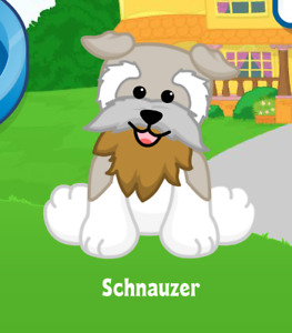 Webkinz Schnauzer Virtual PET Adoption Code Only Messaged Webkinz Schnauzer Dog!