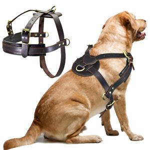 Leather Dog Harness Pet Training Walking Vest for Medium Large Dogs Pitbull K9