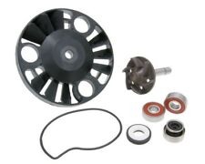 Vespa GT 200 L Water Pump Repair Kit