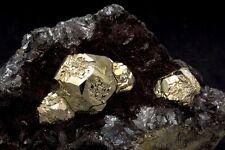 Italian Pyrite on Hematite Mineral Specimen from Rio Marina, Elba Island, Italy