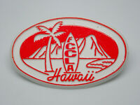 FCCLA Hawaii Vintage Lapel Pin