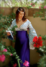 Lady in Waiting Arwen Medieval Gown Sz M Dress Blue Princess Renaissance LOTR