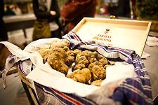 Precious black truffles fresh Mushrooms.From Italy (T.Aestivum) 160g. 5,6oz