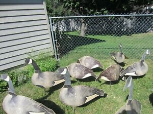 VINTAGE 12 CARRY DUPE-A-GOOSE CARDBOARD FOLDING GOOSE DECOYS GEESE HUNTING USA