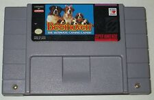 Beethoven: The Ultimate Canine Caper (Super NES, 1993) NTSC (Writing on Game)